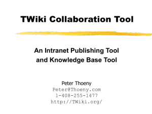 Executive Summary of the TWiki Collaboration Tool