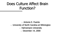 DOES CULTURE AFFECT BRAIN FUNCTION?