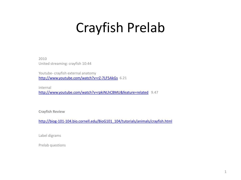 Crayfish prelab power pt