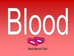 Blood PowerPoint Presentation blood09-10