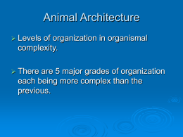 Topic 2. Animal Architecture