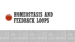 Homeostasis, Feedback mechanism and Enzymes