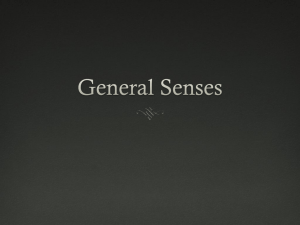 General Senses - Riverside Preparatory High School