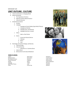 Unit 2 Culture Outline
