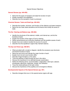 Special Senses Objectives General Senses (pp. 444