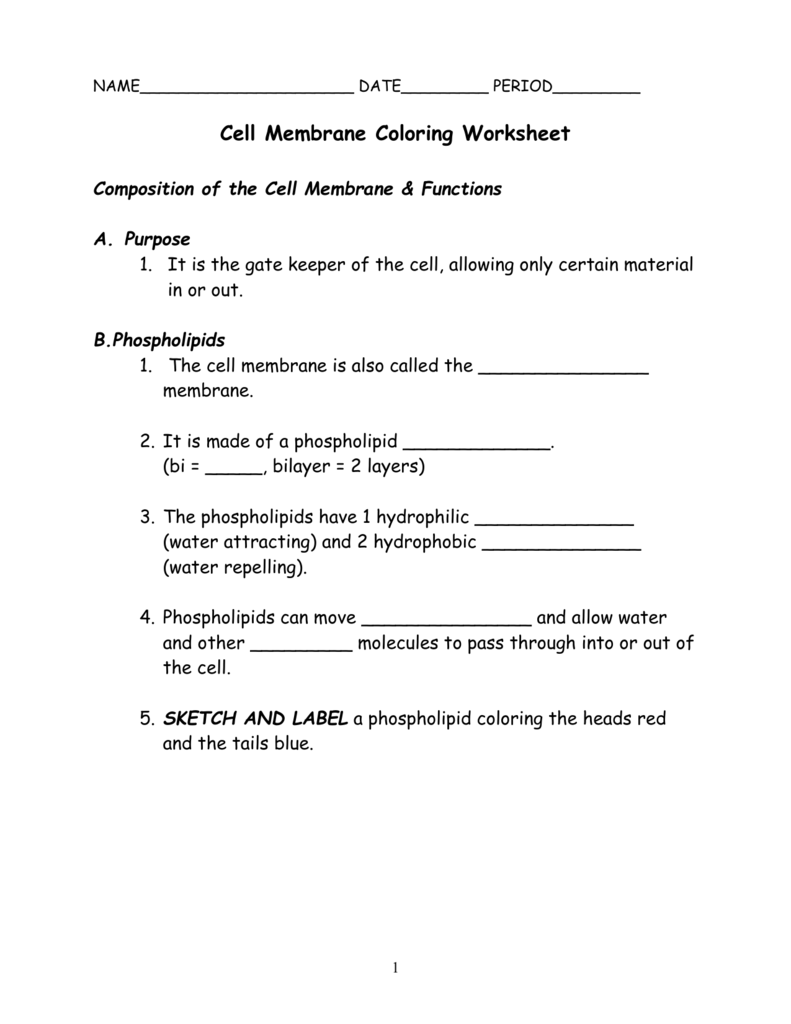 worksheet  composition of functions worksheet  grass fedjp