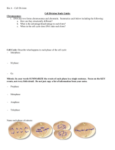 Cell Division Study Guide: