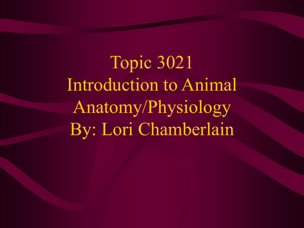 interesting anatomy and physiology topics