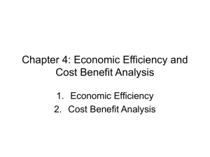 Chapter Four: Economic Efficiency and Cost Benefit Analysis