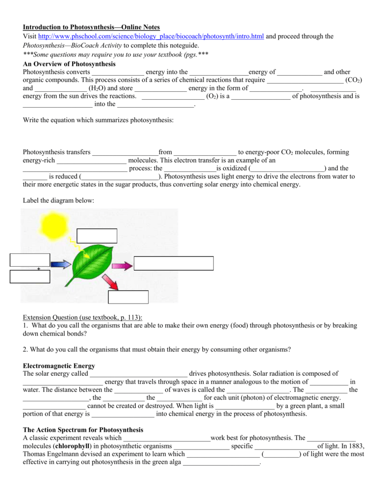 Introduction to photosynthesisonline notes visit httpwww ccuart Gallery