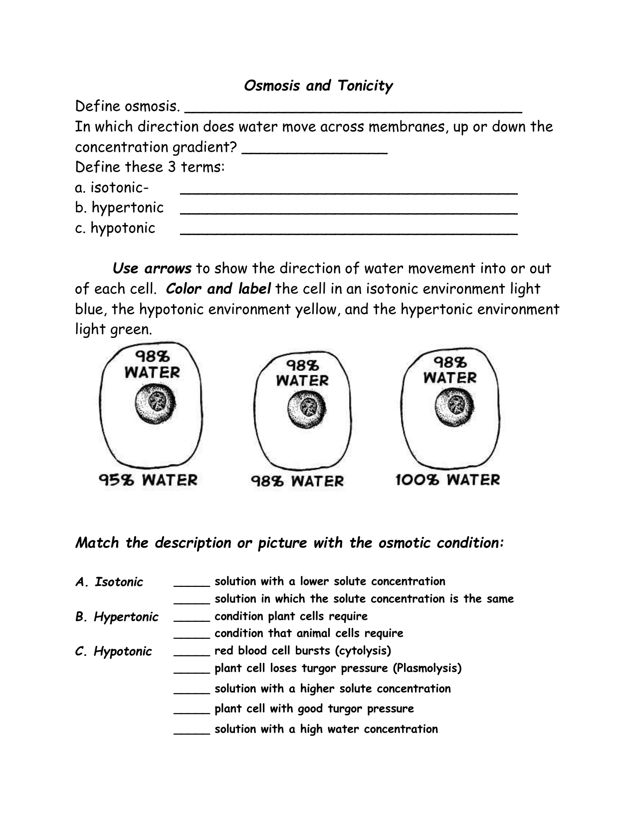 Worksheets Osmosis Worksheet osmosis and tonicity worksheet