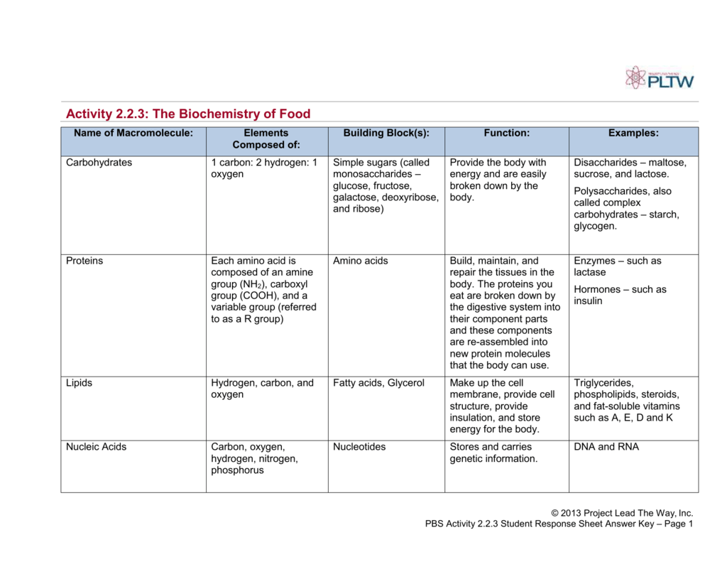 Activity 223 The Biochemistry of Food – Biochemistry Worksheet Answers