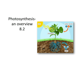 Photosynthesis-an overview 8.2