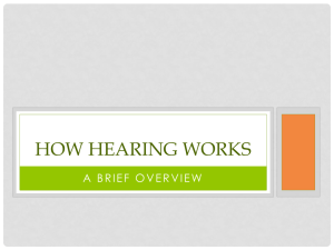 Hearing and Vision PPT