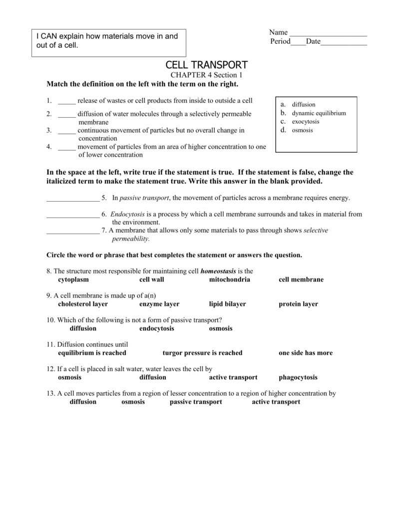 cell transport worksheet Fairfield Public Schools – Active Transport Worksheet