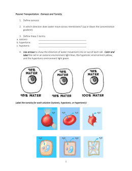 Passive & Active Transport Worksheet