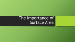 IB 2 Surface Area