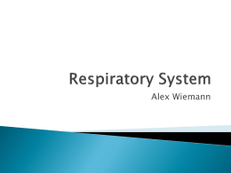 Respiratory - local.brookings.k12.sd.us