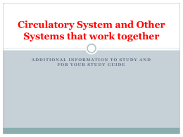 Circulatory System and Other Systems that work together