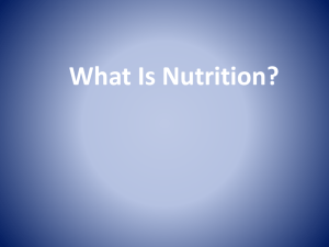 SMED 10 Nutrition PowerPoint