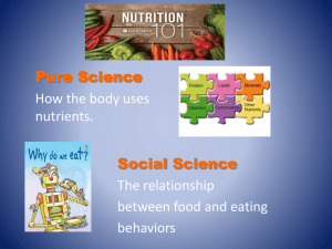 Nutrient PowerPoint