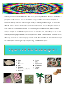 Psychedelic Effects of Hallucinogen Abuse