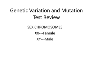 Genetic Variation and Mutation Test Review