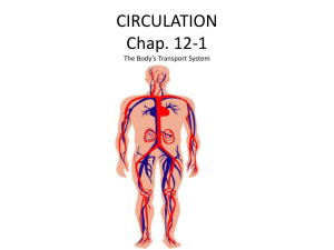 CIRCULATION Chap. 12-1 The Body*s Transport System