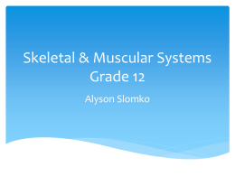 Major Systems of the Body Grade 12