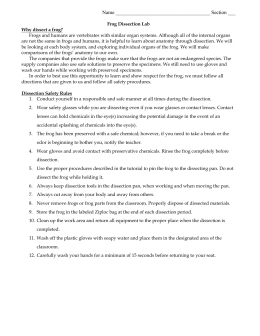 Rat dissection lab report