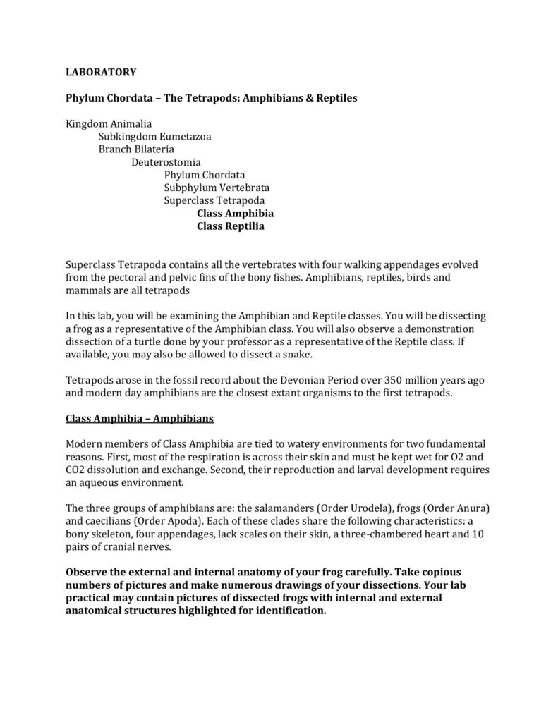 worksheet. Frog Dissection Worksheet Answers. Carlos Lomas Worksheet ...