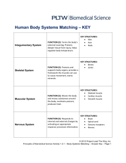 Human Body Systems Matching – KEY