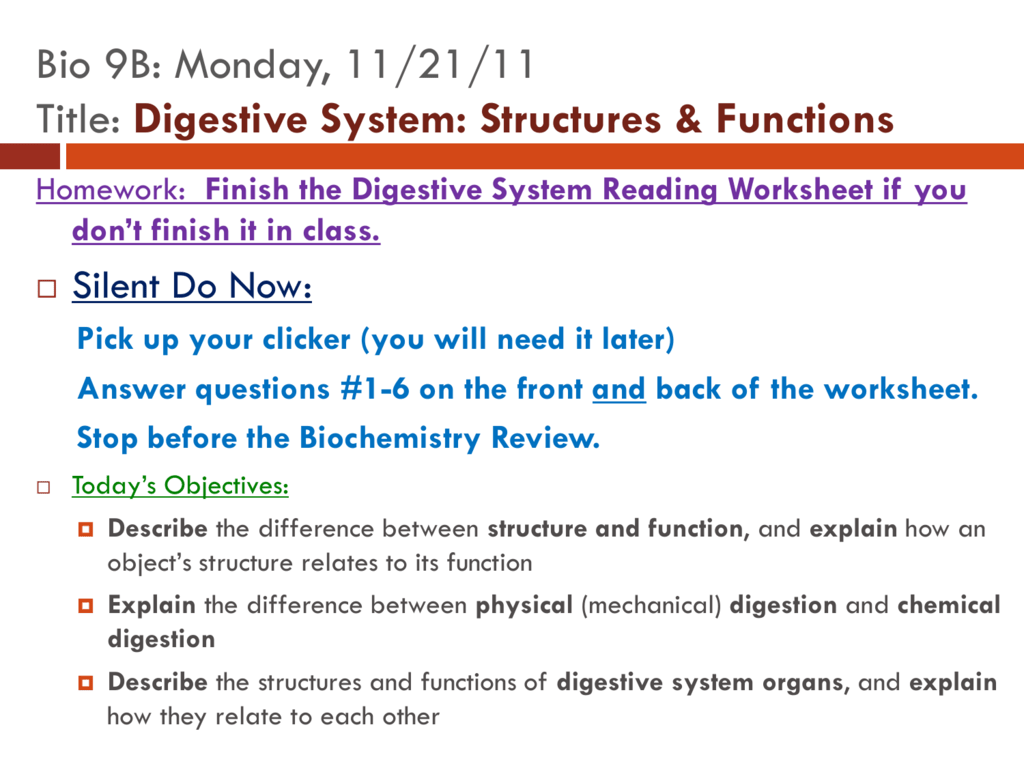 Digestion Powerpoint Notes 9b