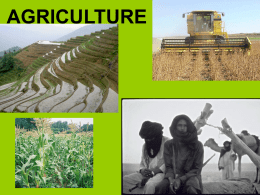 LDC Agriculture ppt