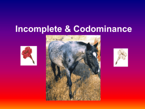 Incomplete & Codominance