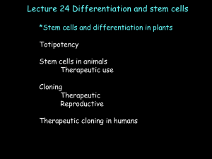 differentiation. - Biology Courses Server