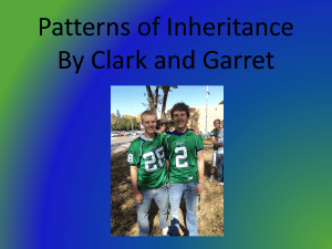 Patterns of Inheritance By Clark and Garret