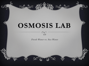 Osmosis Lab - DMPS Science Wiki