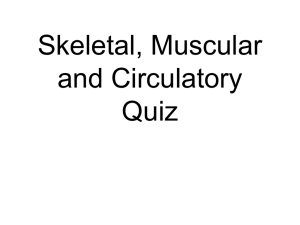 Quiz Review for 2-17