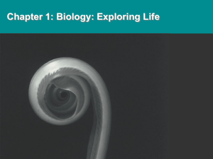video slide - Biology @ IUPUI
