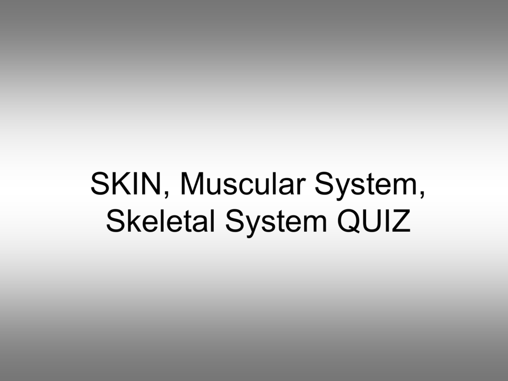 Skin Muscular System Skeletal System Quiz