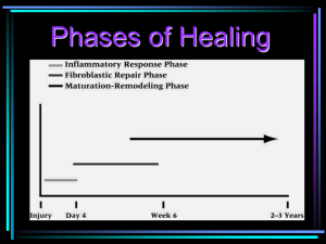 Phases of Healing & Goals of Rehabilitation