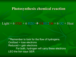 Photosynthesis PPT - Madison County Schools