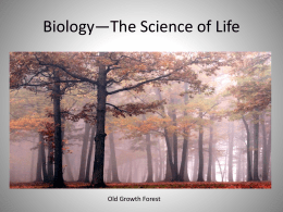 Chapter One: Introduction to Biology