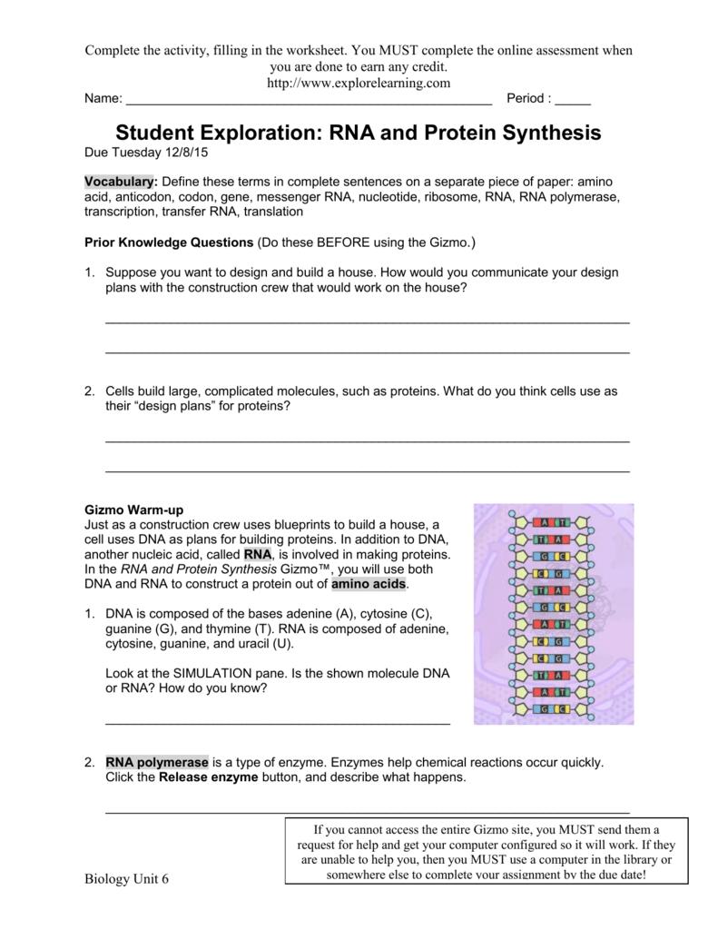 RNAProteinSynthesisSE 2015 - Jones-Bio