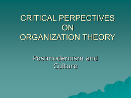 critical perpectives on organization theory