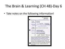 The Brain & Learning (CH 48)