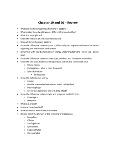 Chapter 19 and 20 – Review