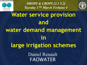 Water service provision and water demand management in large