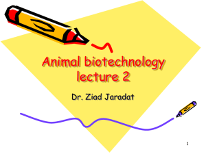 Animal Biotechnology & Transgenic Animals